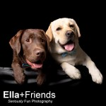 EllaandFriends