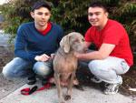 Love Your Pet Melbourne - Pet Parenting Tips
