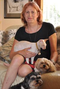 Sally, Cat Minding, Love Your Pet, Petcare Melbourne